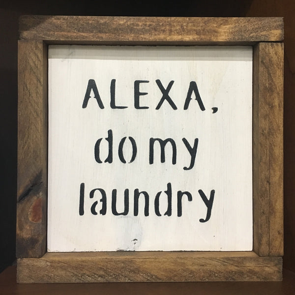 Alexa - do my laundry