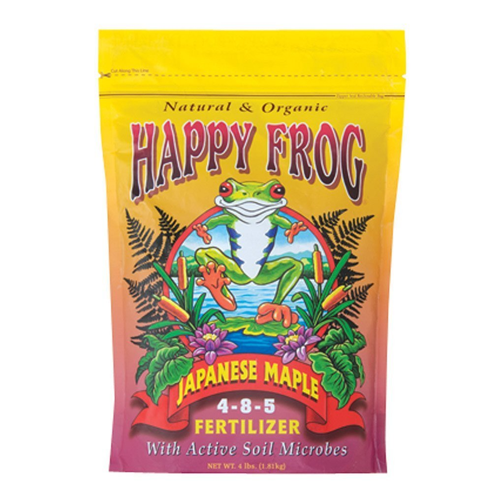 Happy Frog Japanese Maple, 4 lb