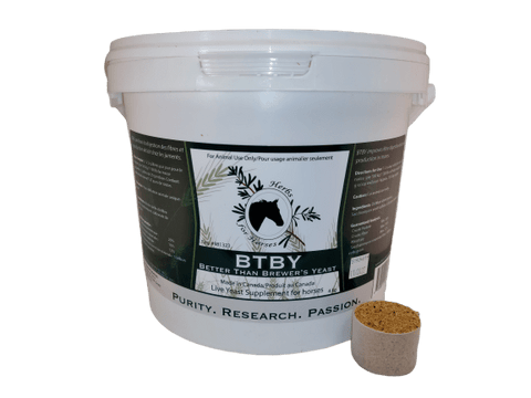 BTBY (Better Than Brewer's Yeast) 4 kg with Scoop