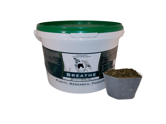 Breathe (no garlic) 1 kg Cut Leaf with Scoop