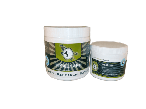Canine Hyalcare Powder
