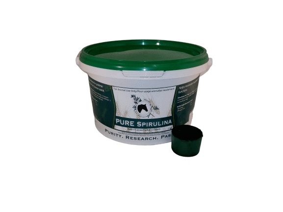 Pure Spirulina 1 kg Powder with Scoop