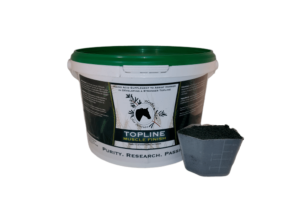 Topline Muscle Finish 2 kg Powder with Scoop