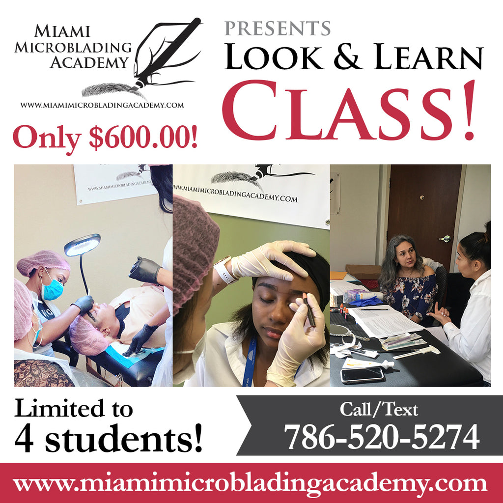 Look n' Learn Microblading Class