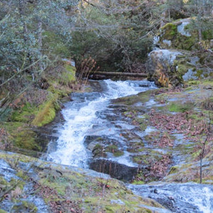 Store Spotlight - Whiskeytown National Recreation Area
