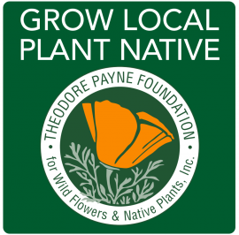 grow local native plant
