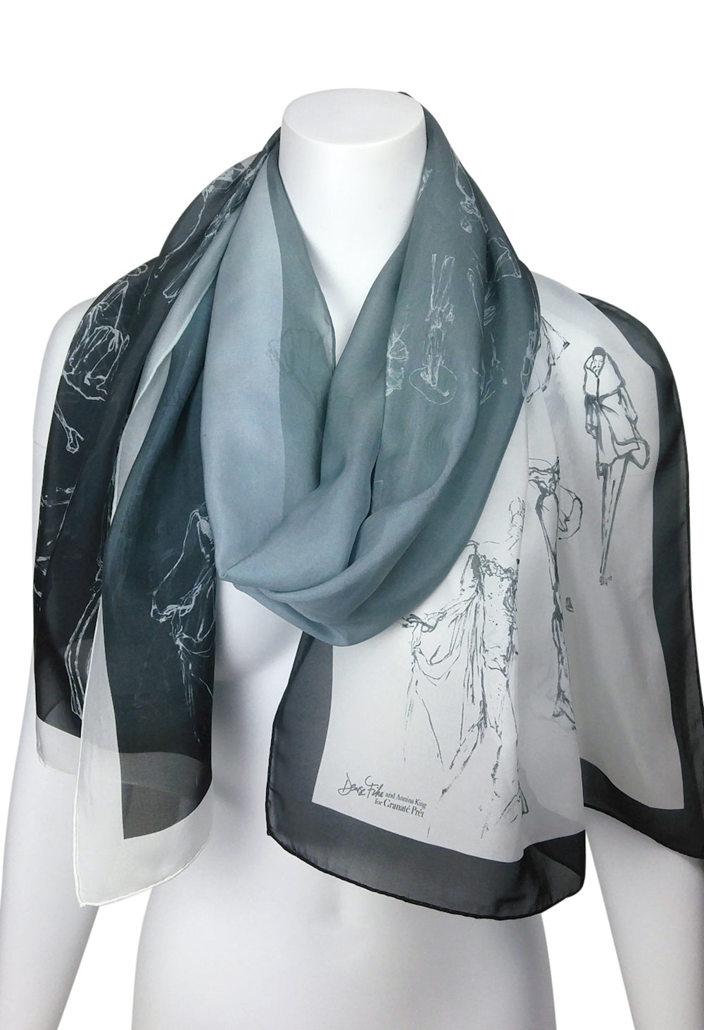 Fashion Procession Ombre Silk Scarf