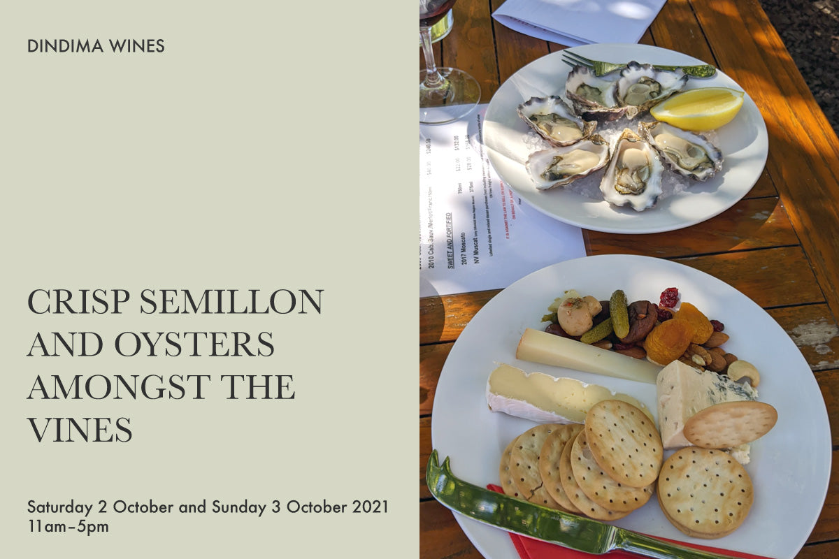 Crisp Semillon and Oysters Amongst the Vines