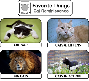 Reminiscence Therapy - Cats DVD & Photo/Activity Cards Kit