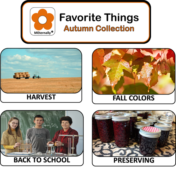 Library Pack - Reminiscence Therapy - Autumn DVD & Photo/Activity Cards