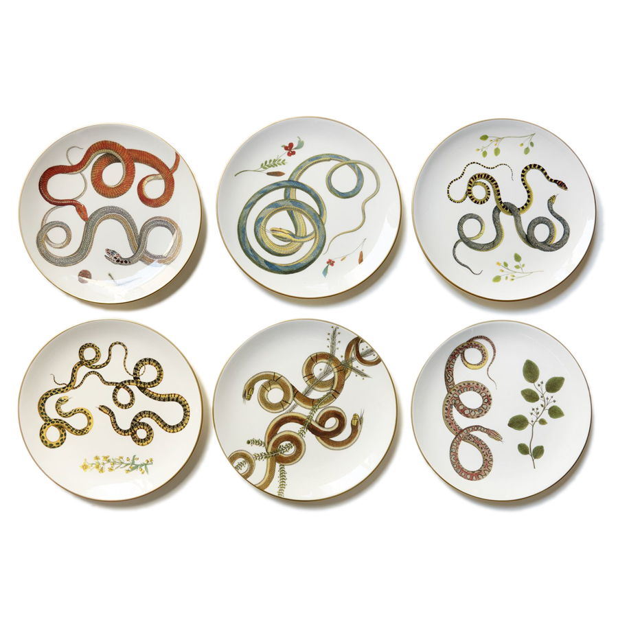 Intertwined Snakes Plates - Set of 6