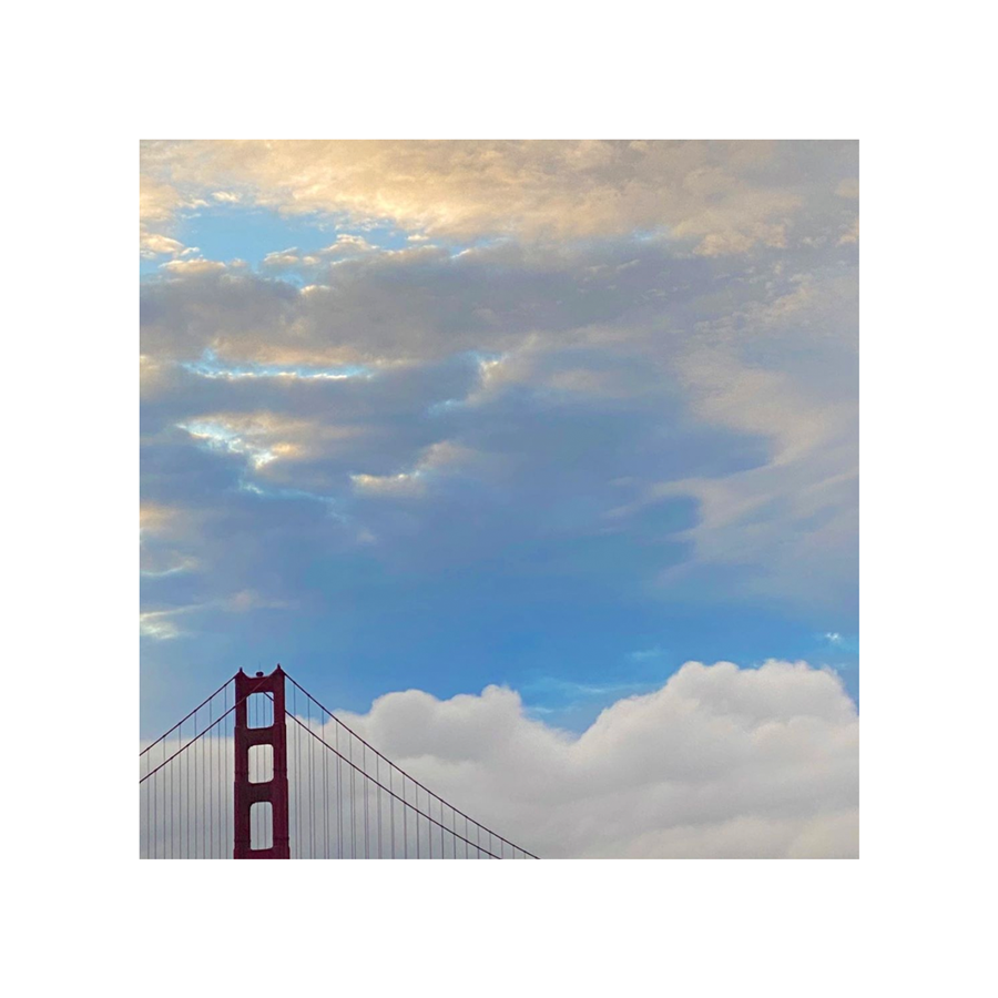 "Michele Bell Photography - The Peak of the Golden Gate - Block 4""x4"""