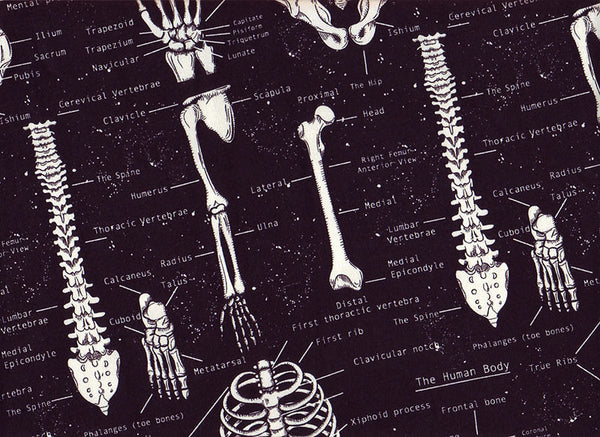 Close-up XL Scrub Surgical Hats Skeletons, glows in the dark