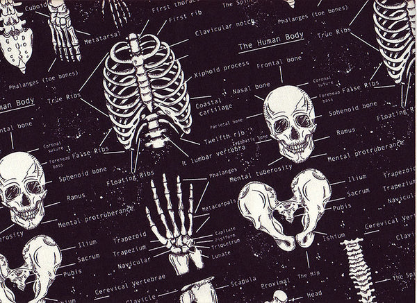 Close-up Surgical Scrub Caps Skeletons, glows in the dark