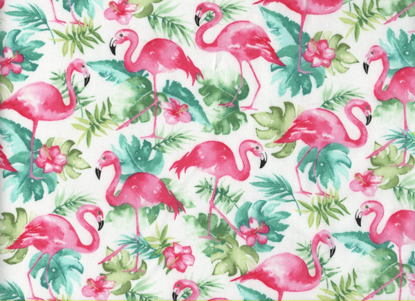 Close Up Pink Flamingos