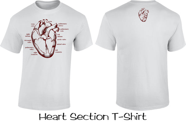 Heart Section T Shirt