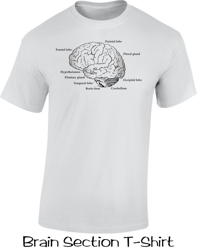 Brain Section T Shirt
