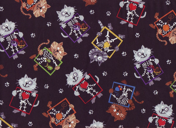 Close-up Stethoscopes Cover X Ray Cats