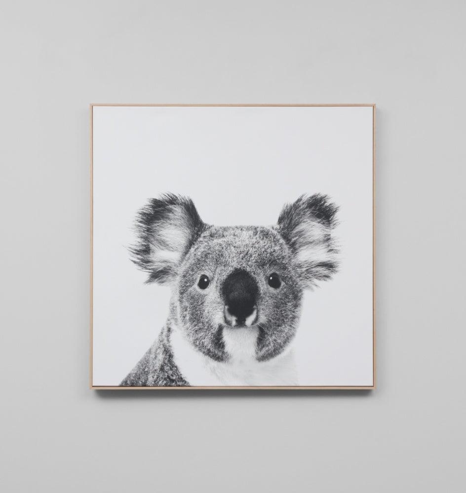 'Koala' Framed Canvas