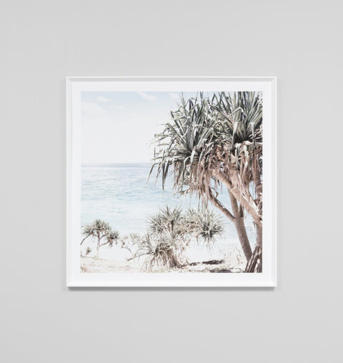 'Coastal Palms' Framed Print