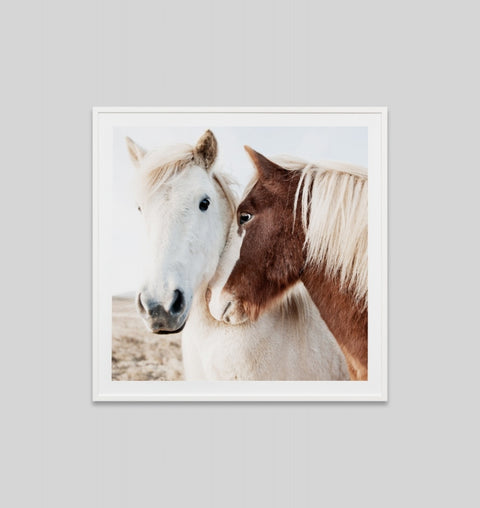 'Winter Ponies' Framed Print