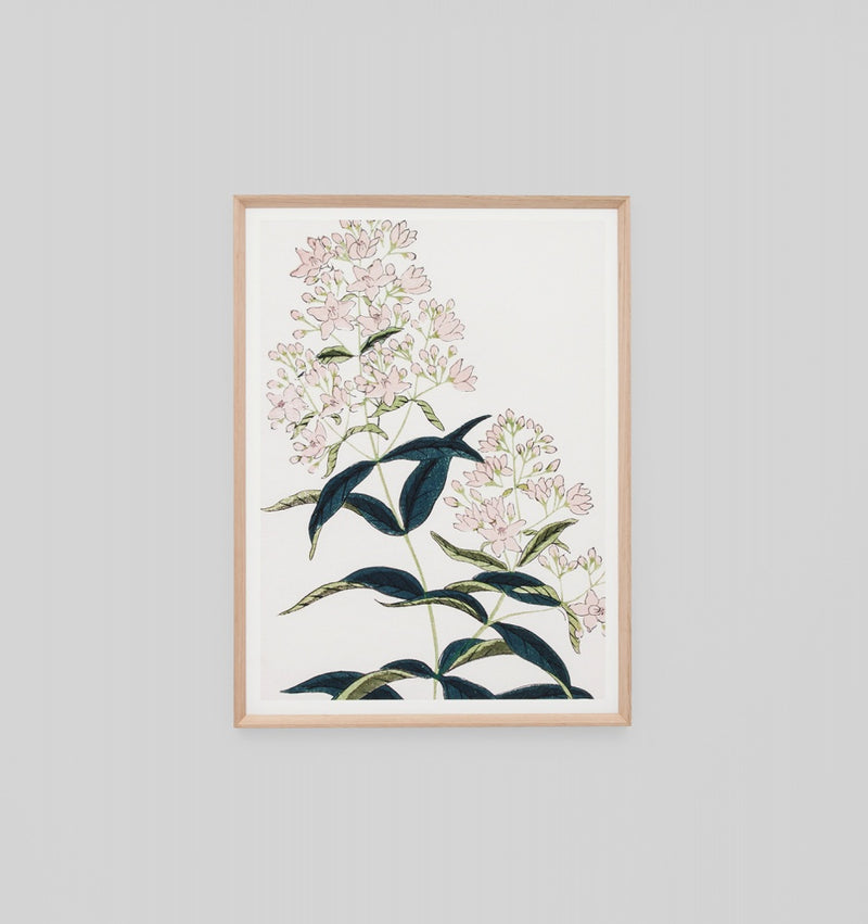 'Spring Flower Woodblock' Framed Print