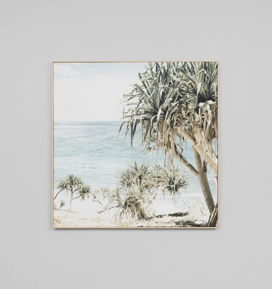 'Coastal Palms' Framed Canvas