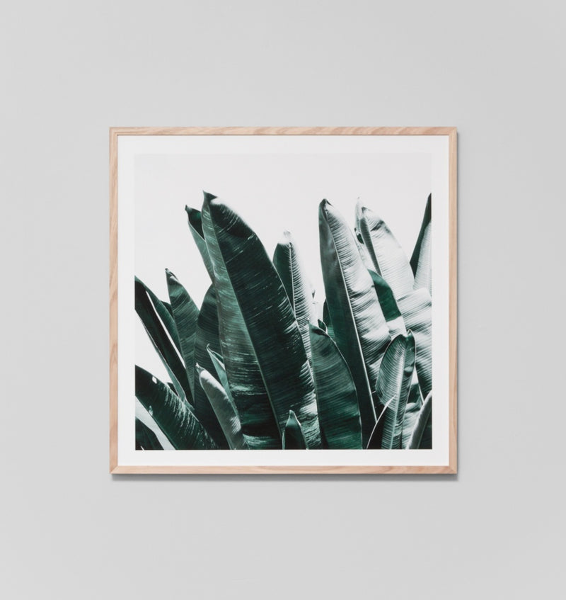 'Summer Leaves II' Framed Print