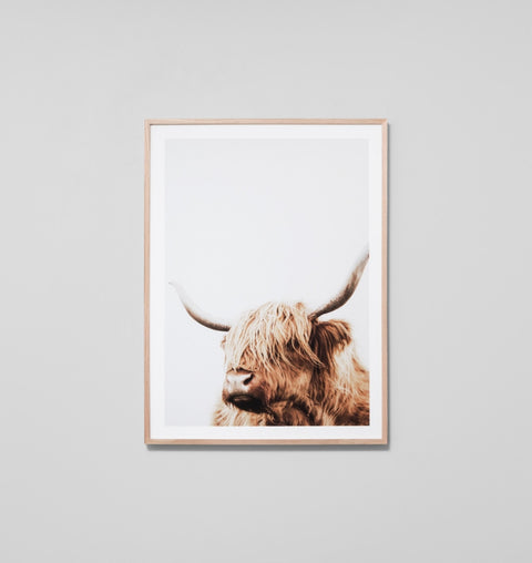 'Highland Friend' Framed Print