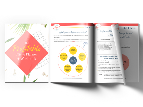 (Private Licensing) PLANNER: THE PROFITABLE NICHE PLANNER WORKBOOK + TRAINING VIDEO