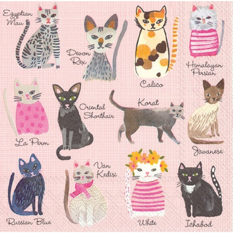 Pink Cool Cats