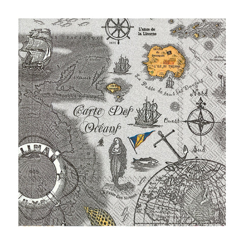 Grey Carte Des Oceans Small Napkins
