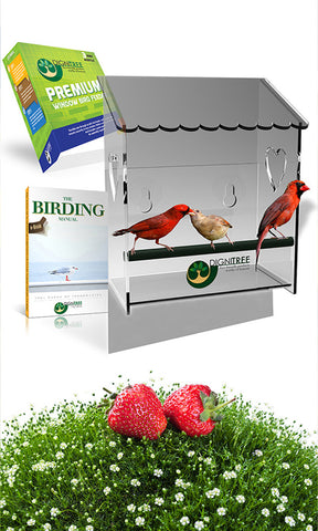 premium acrylic window bird feeder by Dignitree