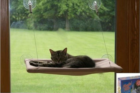 Suction Cups Conservatory Sunshine Window Bed For Cats Pet Wall Bed