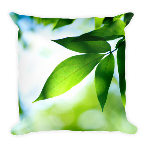 Amazing Nature | Pillow