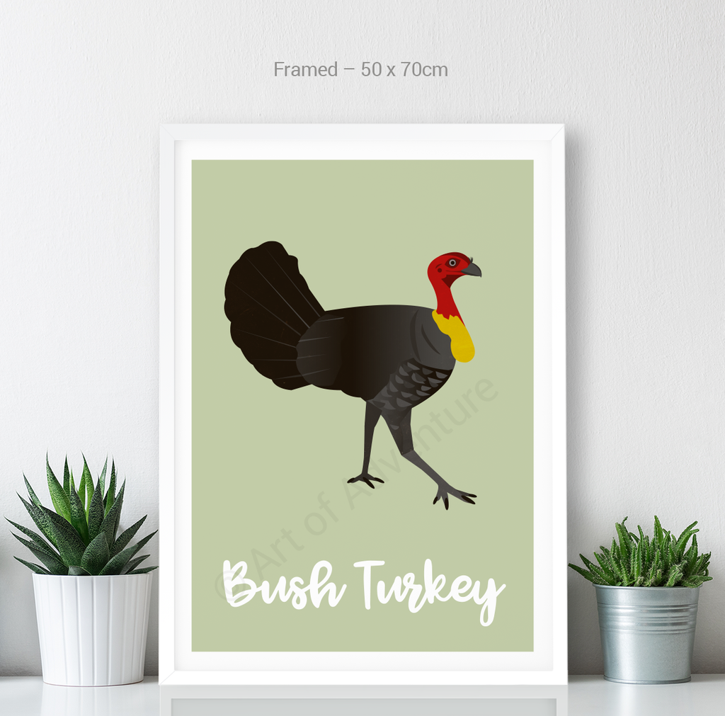 Bush Turkey - Art of Adventure