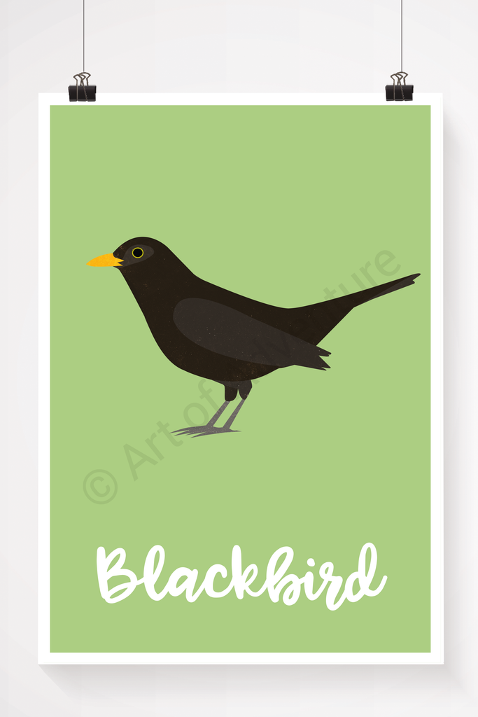 Blackbird - Art of Adventure