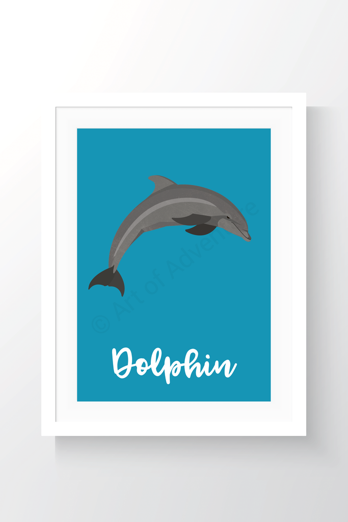 Dolphin - Art of Adventure