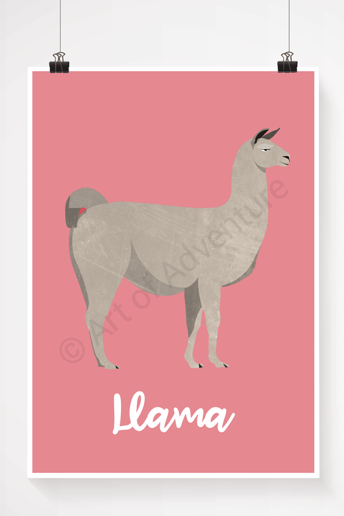 Llama - Art of Adventure
