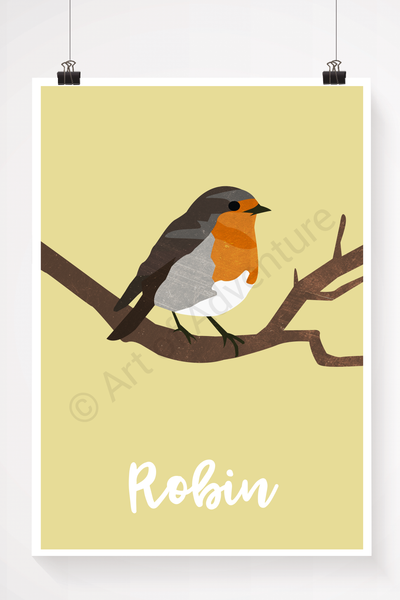 Robin - Art of Adventure
