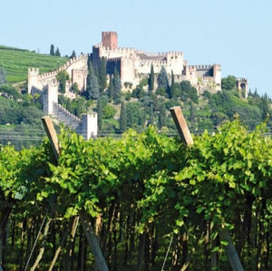 Photo of Castello di Soave by Italian Wine Connection