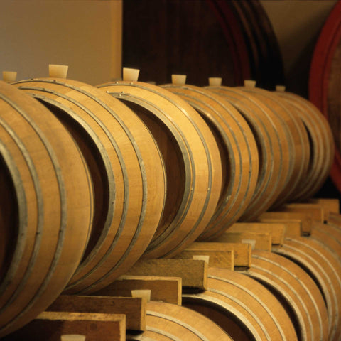 Barrels inside Cecchetto's cellar
