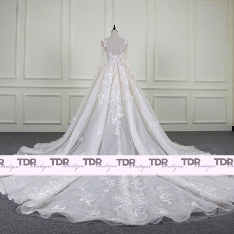 Carolina Long Sleeved Mesh Wedding Dress