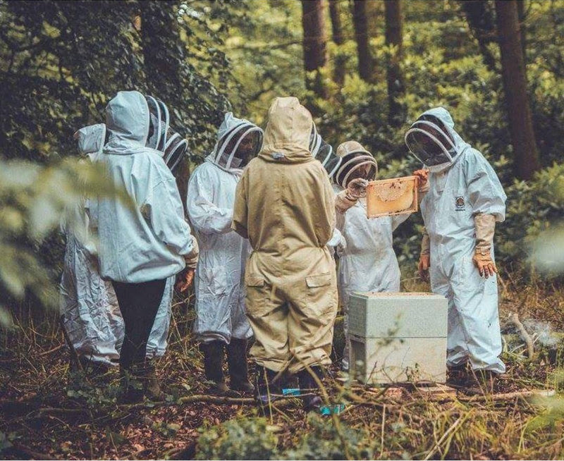 Introduction to Beekeeping  11:00AM - 14:30PM