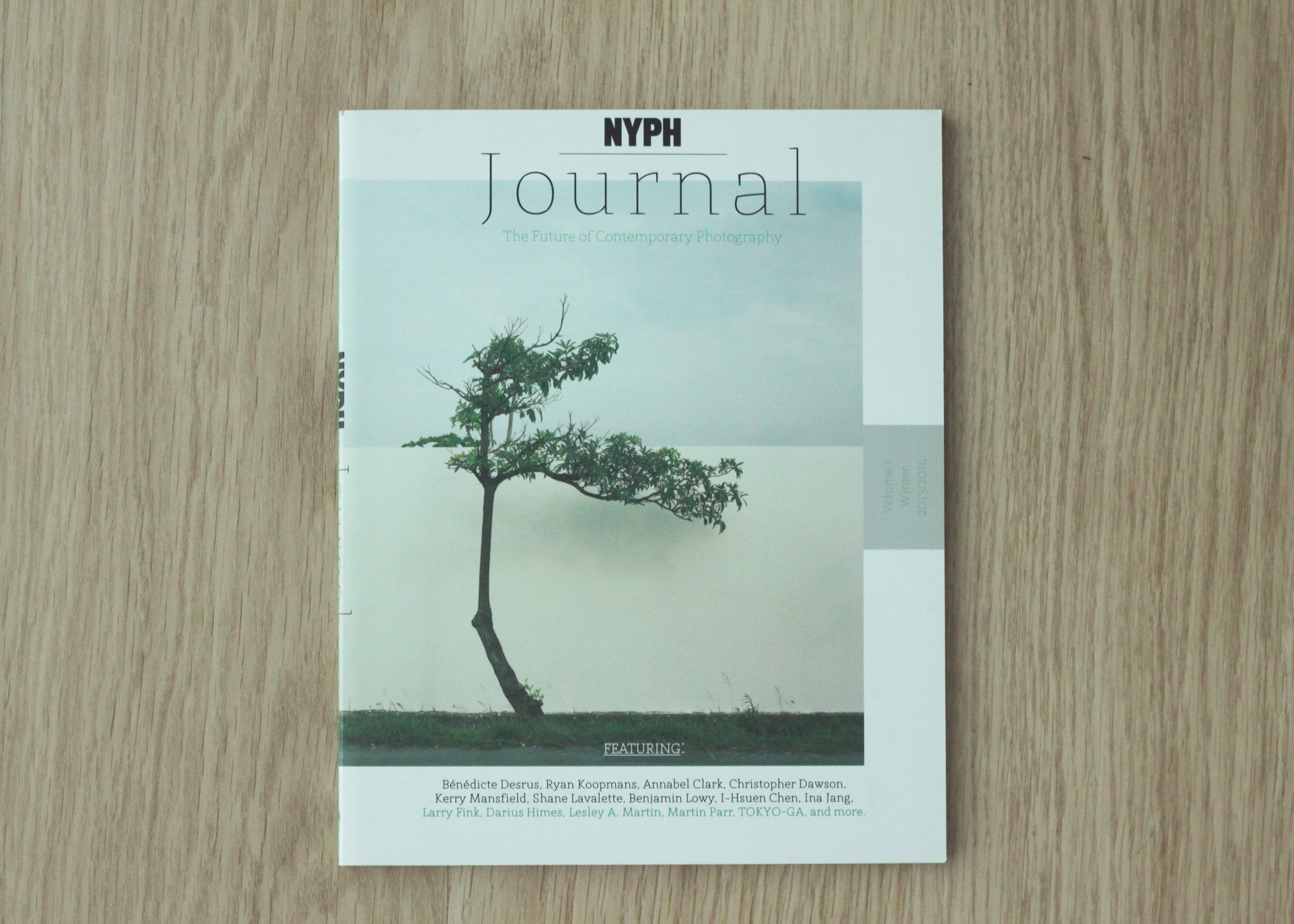 NYPH Journal:  The Future of Contemporary Photography