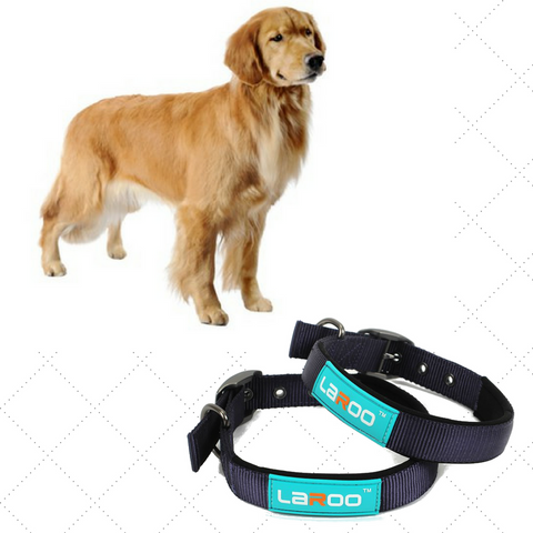 Heavy Duty Collar For Large Dogs