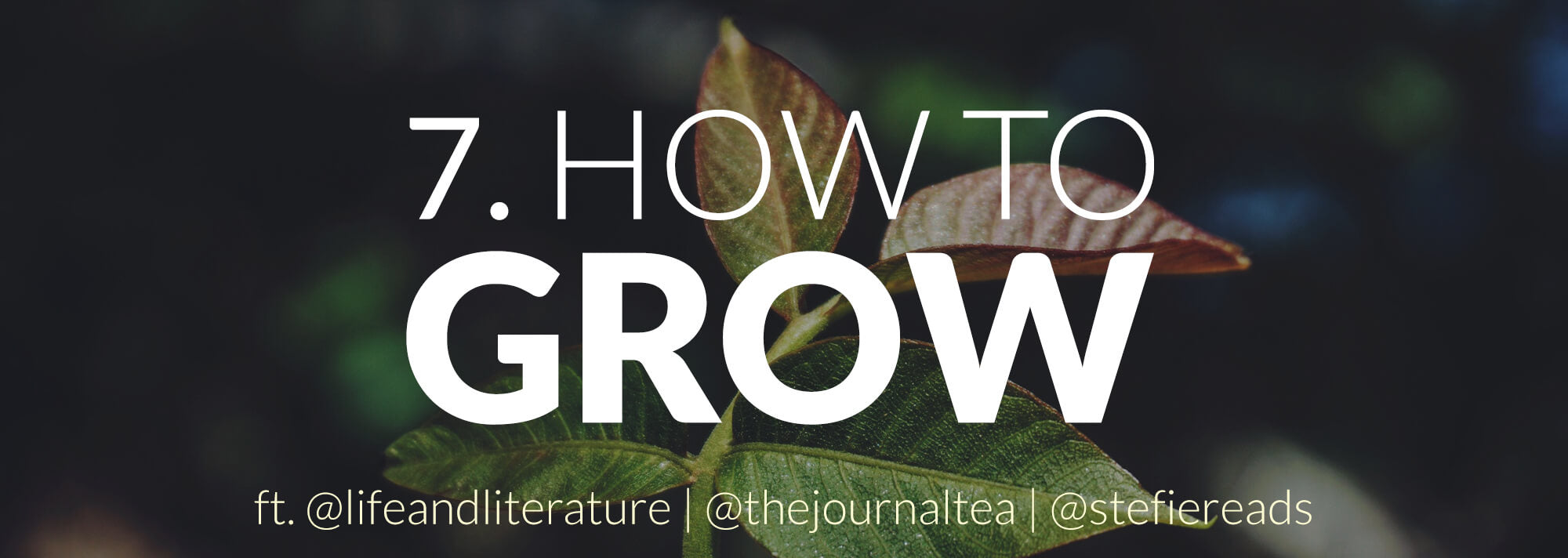 header image - how to grow