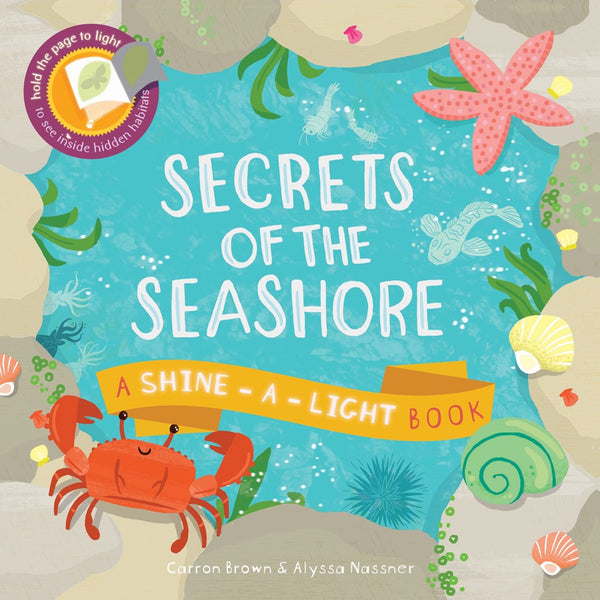 Secrets of the Seashore by Carron Brown and Illustrated by Alyssa Nassner