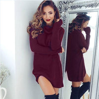 Casual Long Sleeve TurtleNeck Jumper Sweater