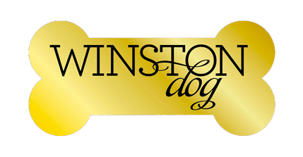 winston, dog, boutique